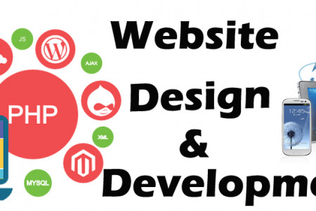 Website Development and designing IT Company Infographic
