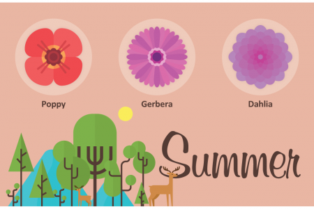 Wedding Flowers For Different Seasons Infographic