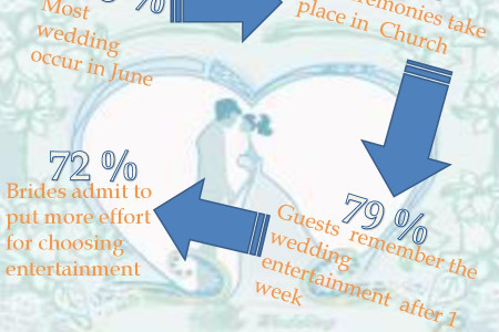 Wedding Plans Infographic
