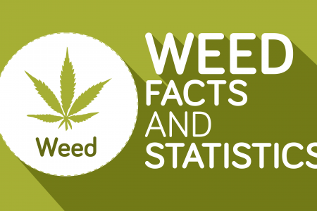 Weed Facts and Statistics Infographic