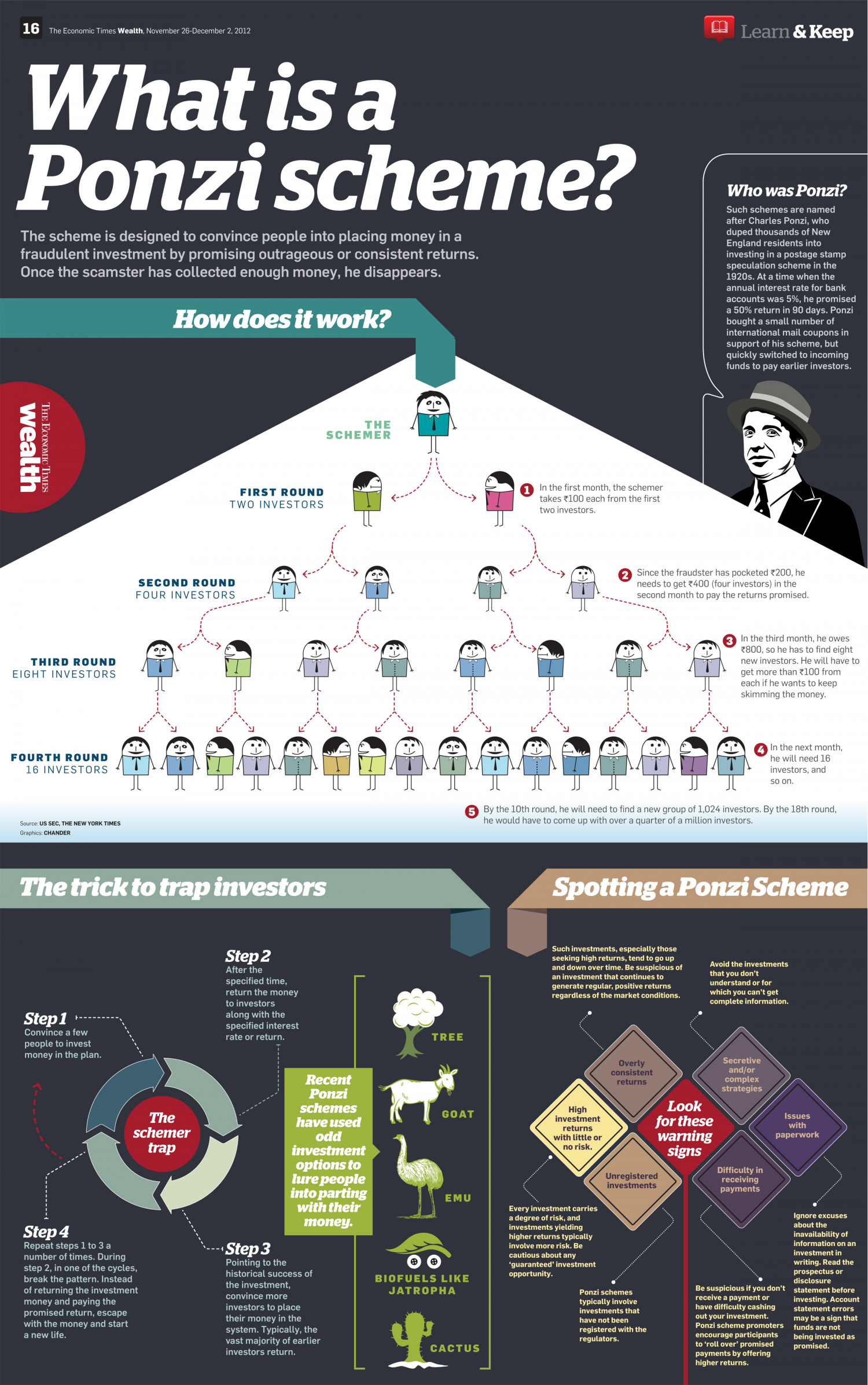 What is a Ponzi Scheme? Infographic