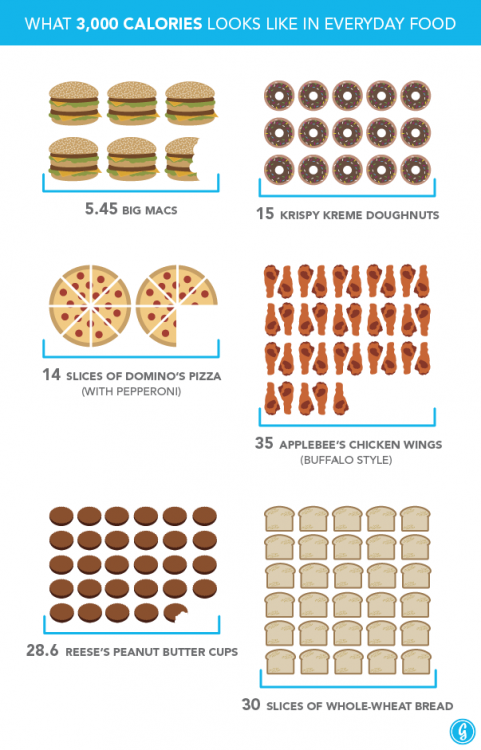 Thanksgiving Dinner What 3000 Calories Looks Like In Everyday Food