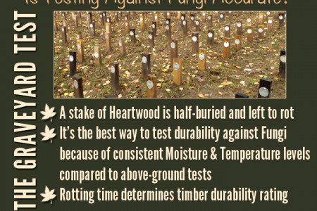 What Affects The Natural Durability Of Timber Infographic
