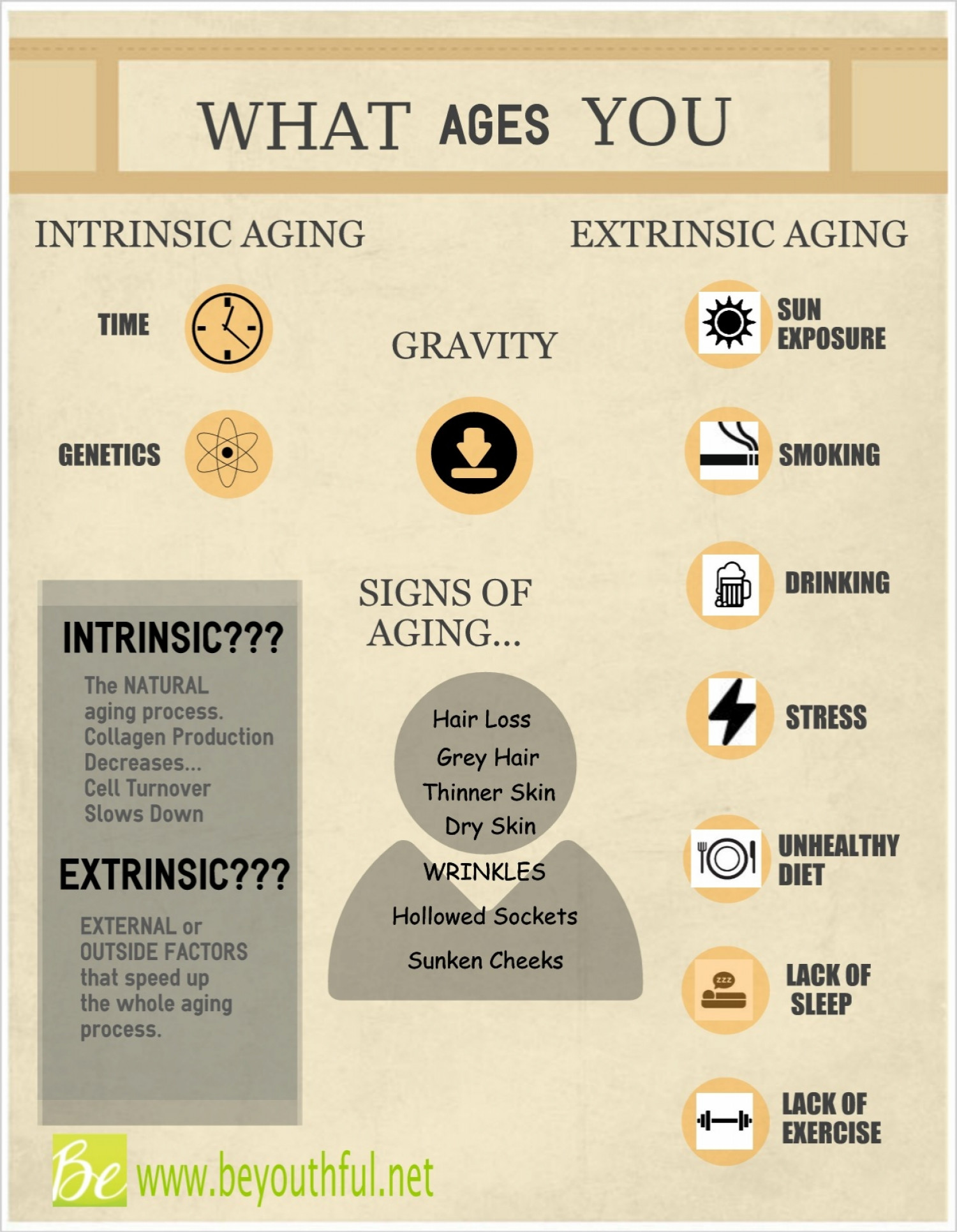 What Ages You: Intrinsic Vs. Extrinsic Infographic