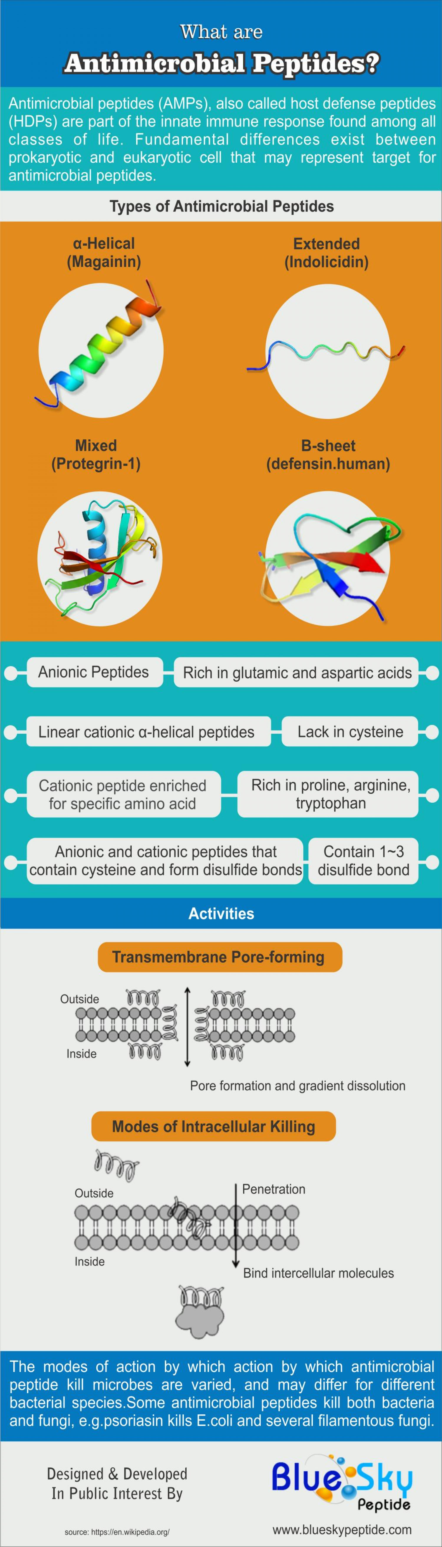 What are Antimicrobial Peptides? Infographic
