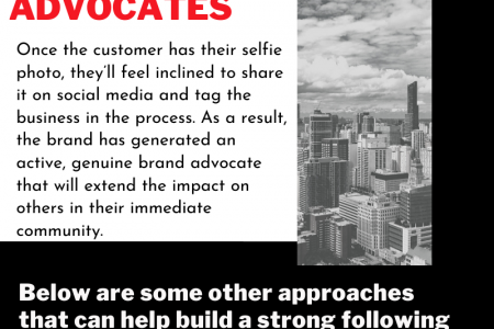 What are Brand Advocates and How Brand Advocates Help Your Business? Infographic