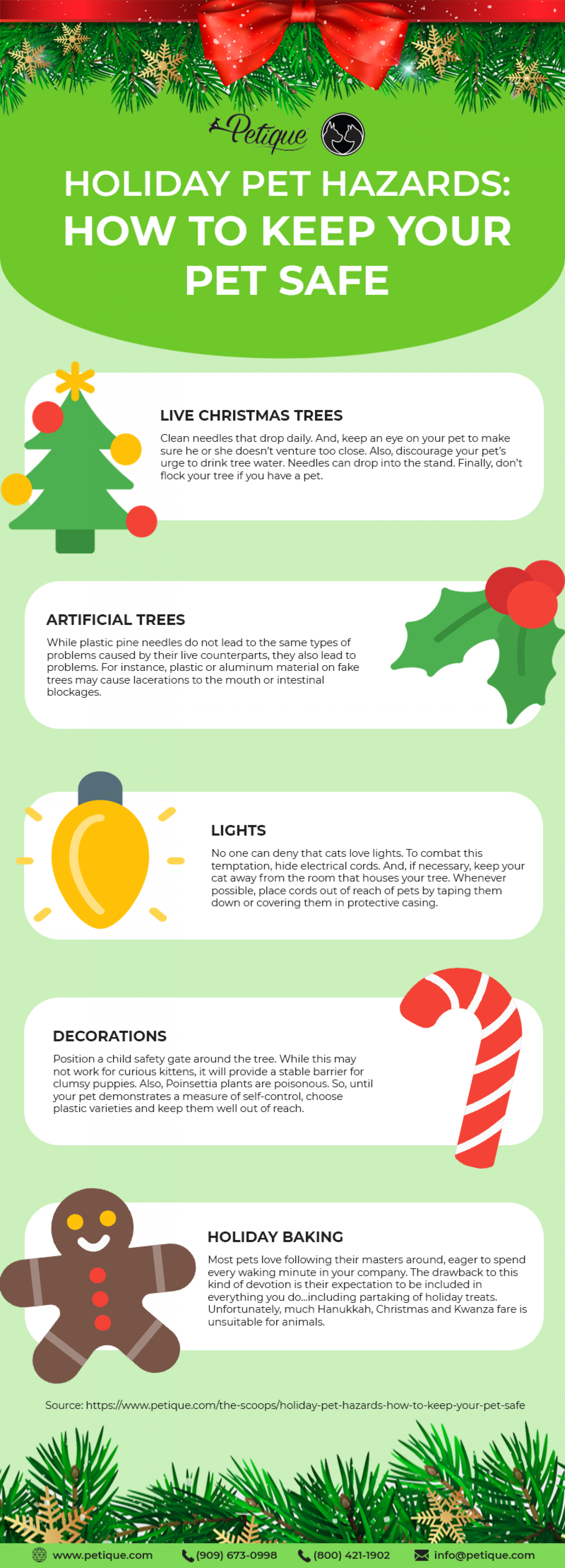 What are Hazardous to Your Pets During the Holidays? Infographic