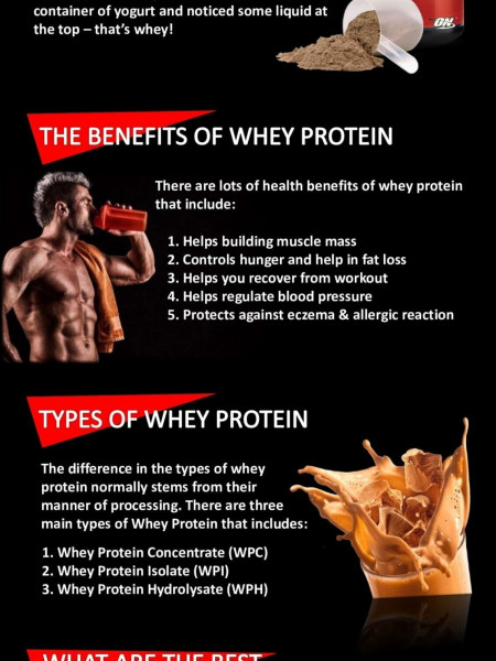What Are The Best Whey Protein Powders? Infographic