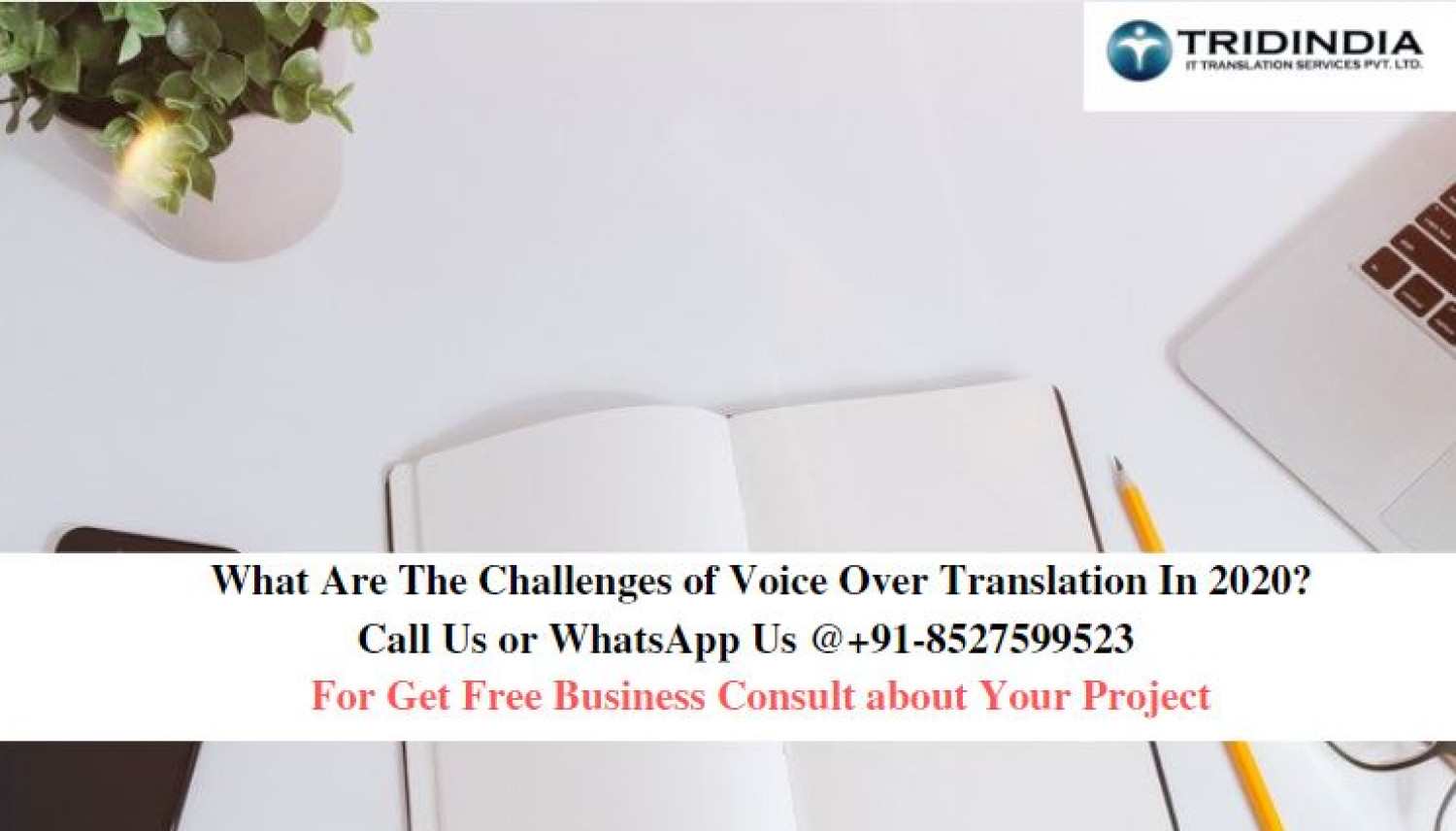 What Are The Challenges of Voice Over Translation In 2020?  Infographic