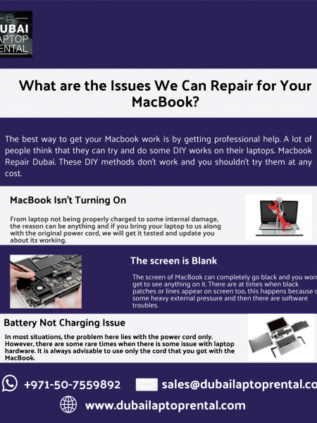 What are the Issues We Can Repair for Your MacBook? Infographic