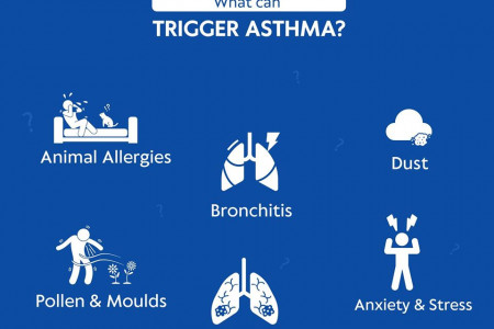 What Can Trigger Asthama? Infographic
