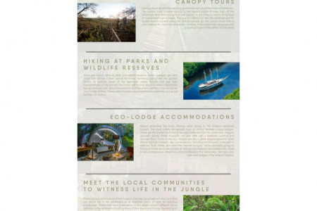 What Can You Do In the Amazon Rainforest? Infographic
