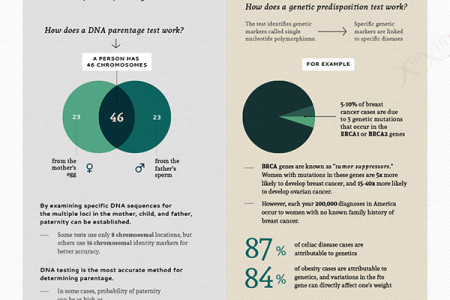 What Can Your DNA Tell You Infographic