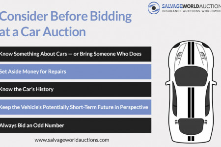 Consider Before Bidding at a Car Auction Infographic