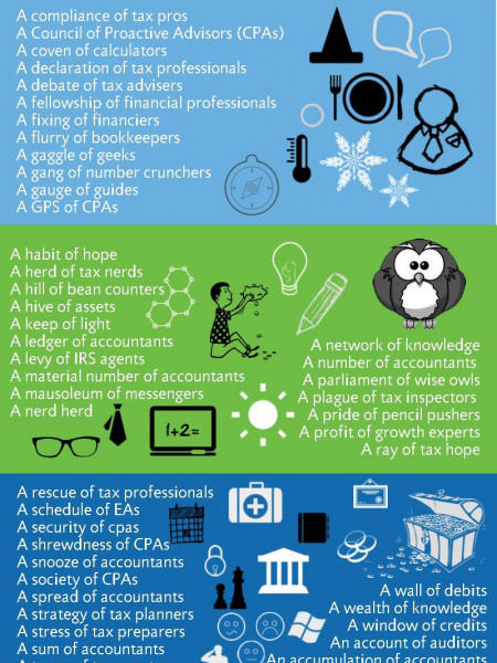 What Do you Call a Group of Tax & Accounting Professionals? Infographic