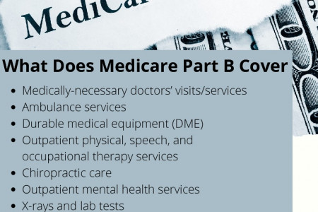 What Does Medicare Part B Cover Infographic