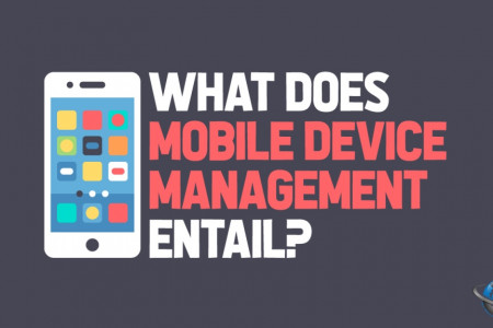 What Does Mobile Device Management Entail? Infographic