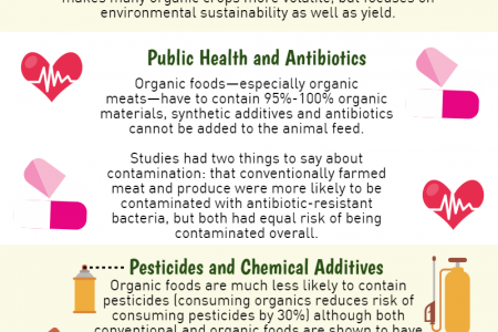 What does Organic Mean? And Should I buy it? Infographic