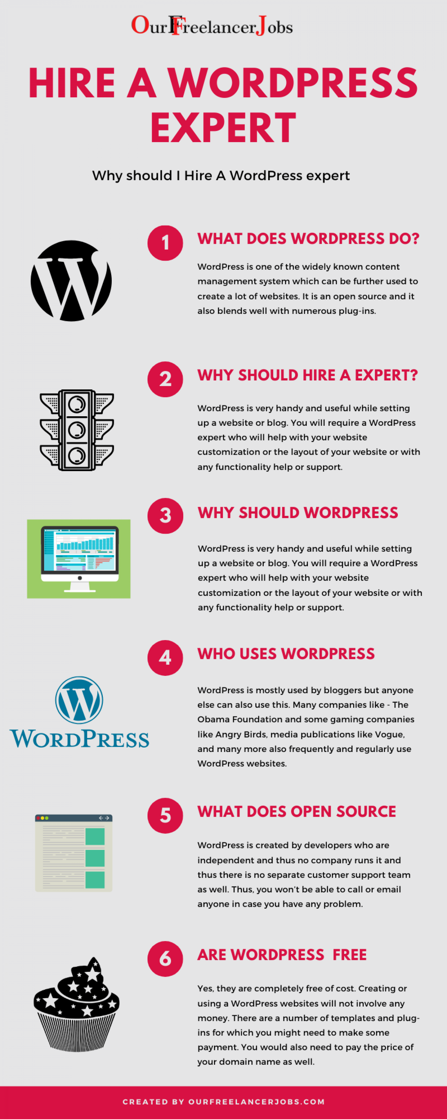 What does WordPress do? Why should I hire a WordPress expert? Infographic