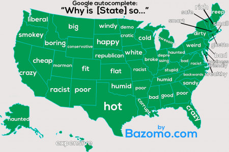 What Each State Asks Google? Infographic