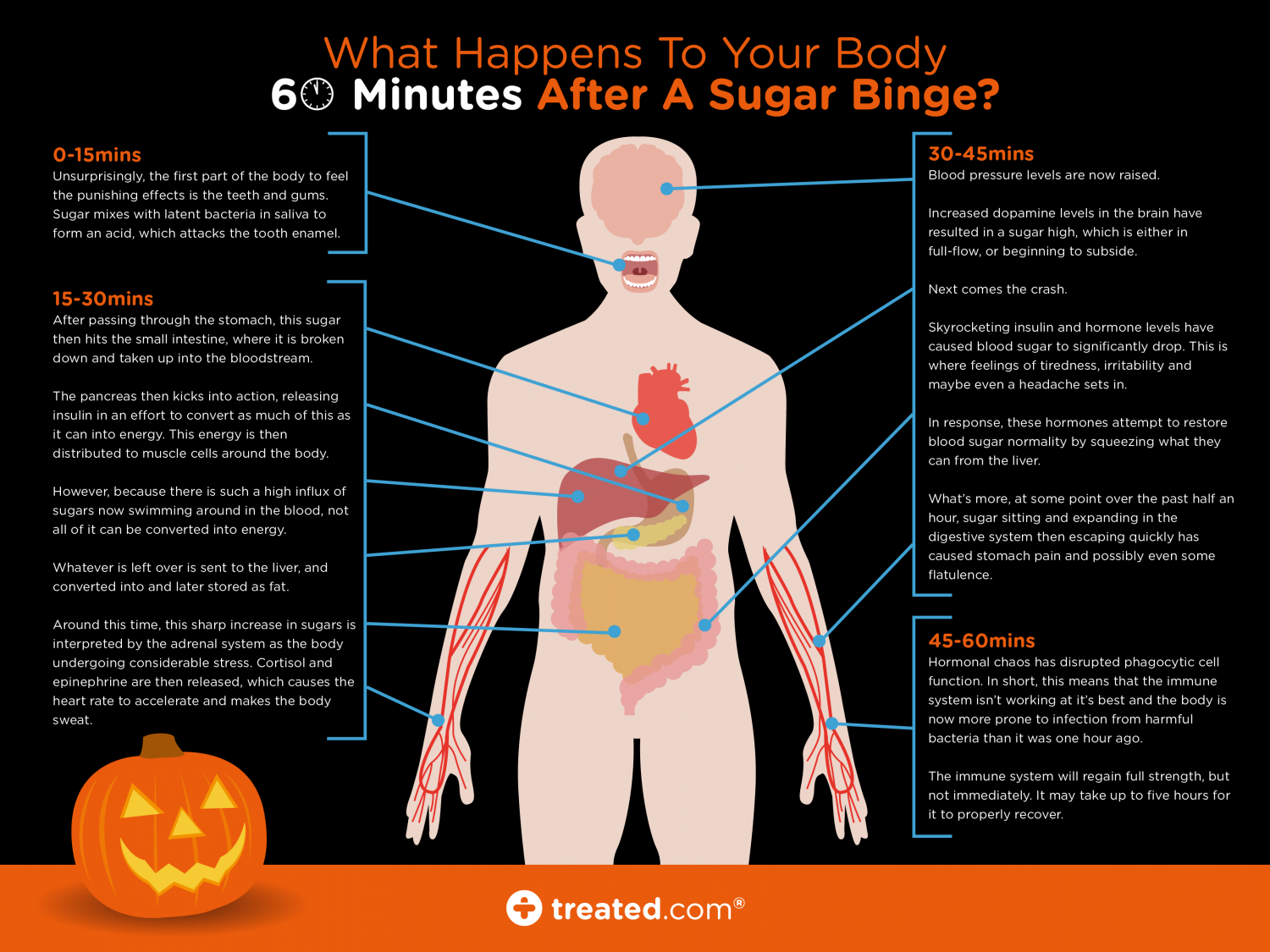 What Happens in the Body 60 Minutes After a Sugar Binge (Body Variant) Infographic