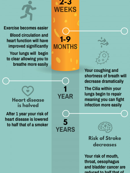 What happens to the human body when you stop smoking Infographic