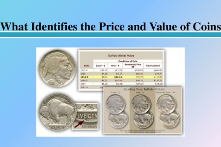 What Identifies the Price and Value of Coins Infographic