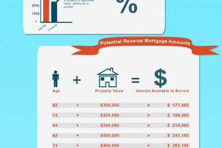 What is a Reverse Mortgage Infographic