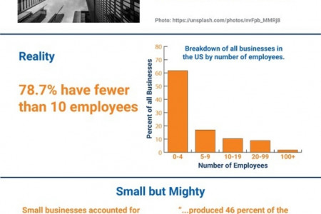What is a Small Business? Infographic