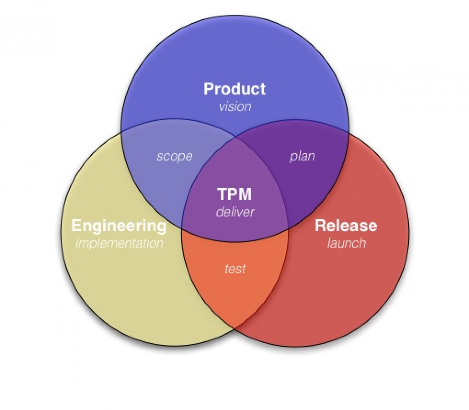 what is a technical program manager tpm visual ly