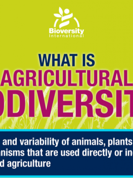 What is Agricultural Biodiversity? Infographic