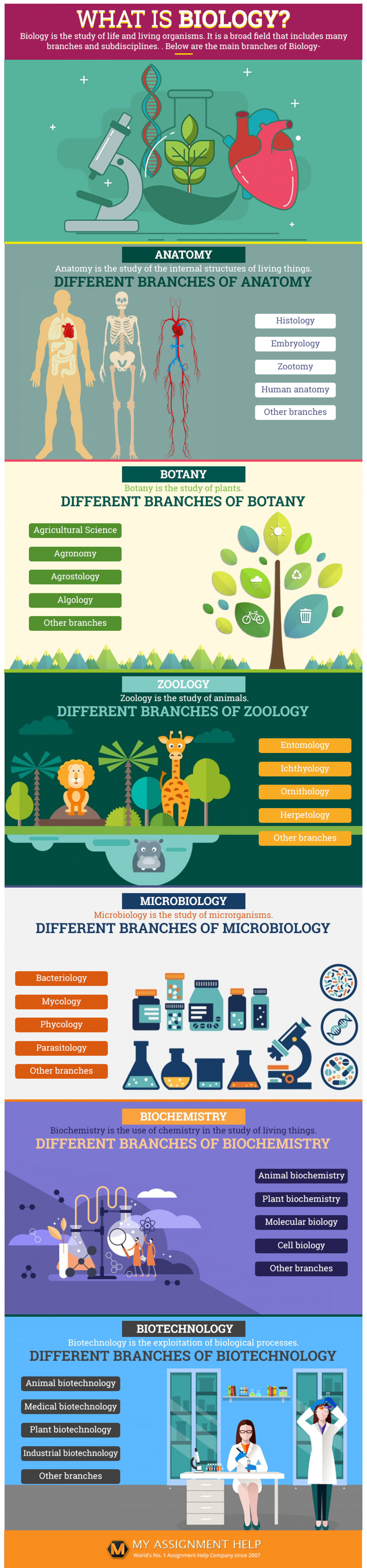 What Is Biology? Infographic