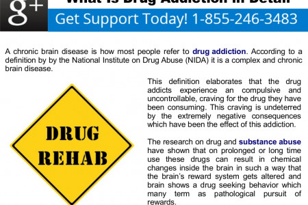 What Is Drug Addiction in Detail Infographic