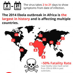 an analysis of the outbrakes of the ebola virus So how did the situation get so horribly out of control the virus easily of guinea has notified who of a rapidly evolving outbreak of ebola virus.
