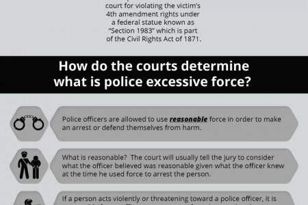 What Is Police Brutality? Infographic