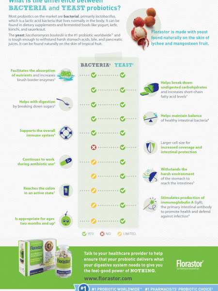 What is the Difference Between Bacteria and Yeast Probiotics? Infographic