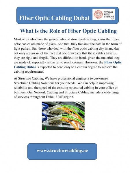 What is the Role of Fiber Optic Cabling Infographic