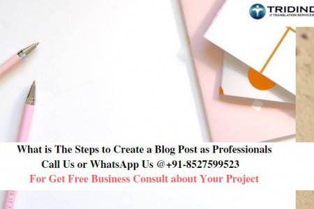 What is The Steps to Create a Blog Post as Professionals Infographic