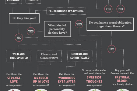 What kind of flowers should you get your Valentine? Infographic
