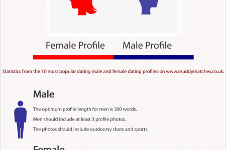 What Makes a Dating Profile Popular? Infographic