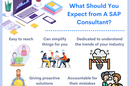 What Should You Expect from A SAP Consultant? Infographic