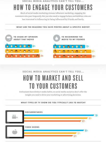 What Social Media Analytics Can't Tell You About Your Customers Infographic