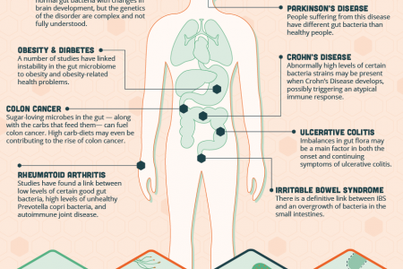What The Bacteria In Your Gut Have To Do With Your Physical And Mental Health Infographic