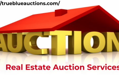 What things to check out before hirring any professional auction services? Infographic