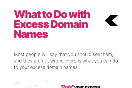 What to do with Domain Names You Bought on Impulse  Infographic