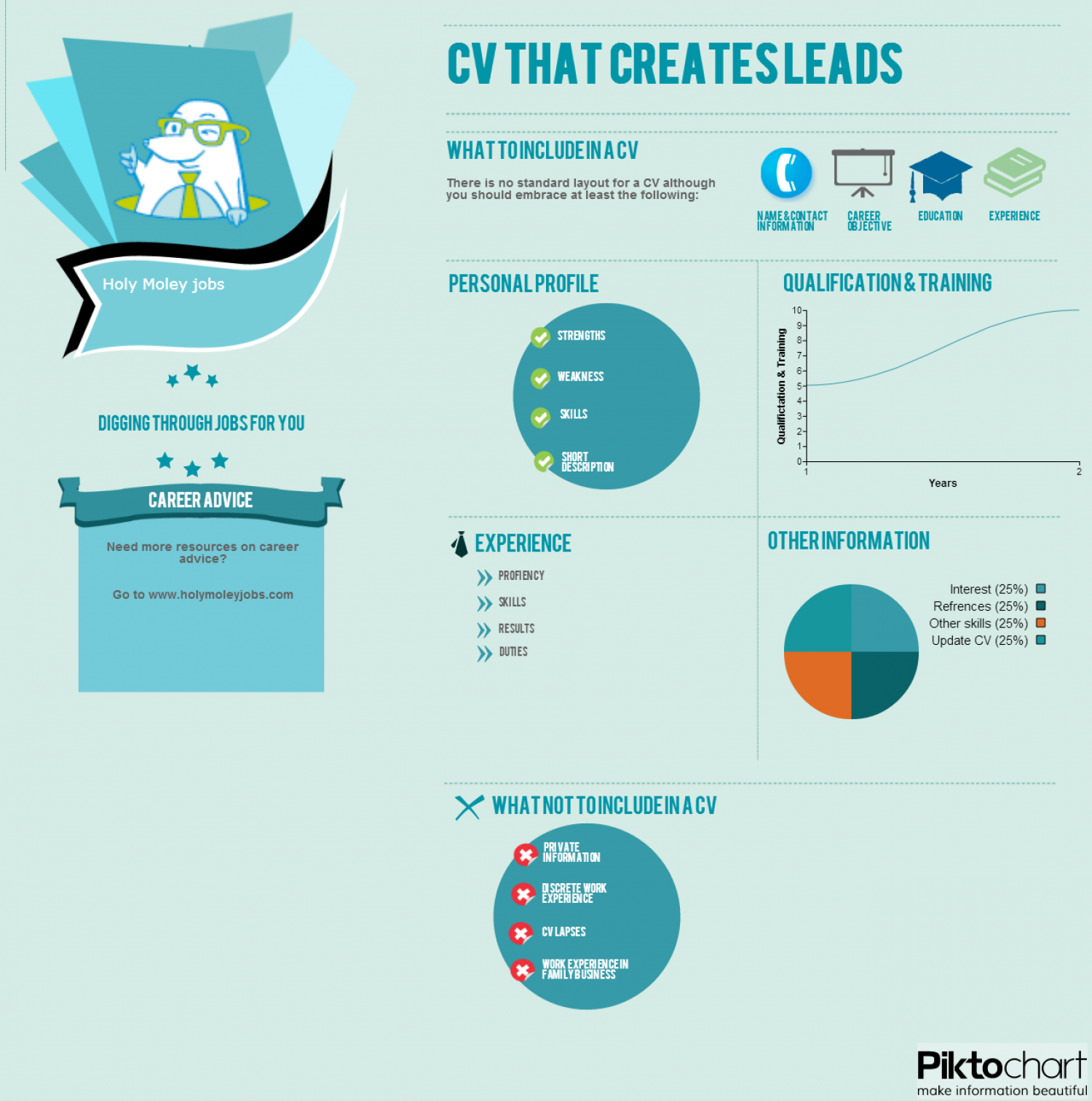 what to include in a cv visual ly