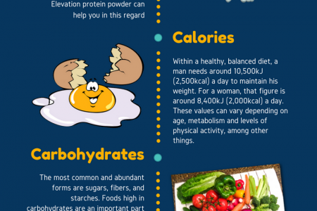 What will you get from Elevation Protein Powder? Infographic