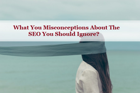 What You Misconceptions About The SEO You Should Ignore? Infographic