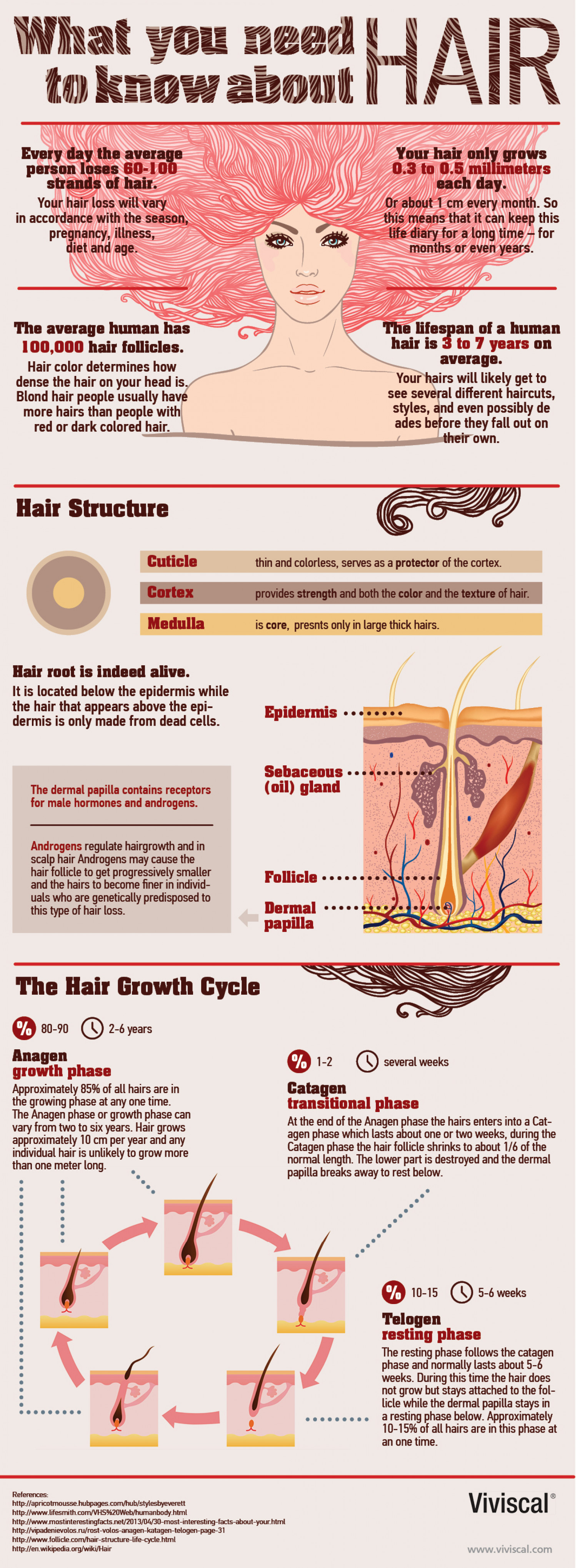 What you need to know about hair. Infographic