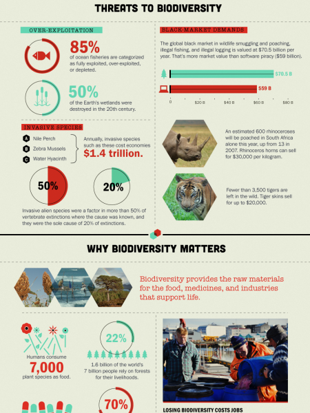 What's Happening to Biodiversity? Infographic